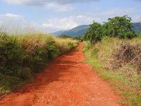 road-in-jamaica