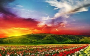 beautiful-landscape-hd-wallpap-2-0-s-307x512